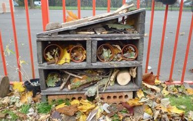 Reception's Bug Hotel